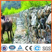 High quality hexagonal wire mesh/gabion box of factory price