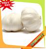Jinxiang OKEYA 10kg Bulk Garlic,Bulk Garlic For Sale