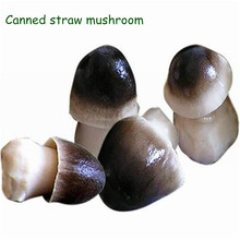 2015 New Crop Whole Canned Straw Mushroom at factory price