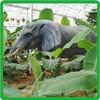 hot sale outdoor playground simulation elephant model,emulation elephant