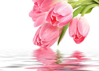 Customize tulips reflection stereoscopic 3d wallpaper 3d mural wallpaper