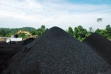 Indonesia Coal(Direct Supply)