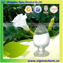 Supply best CAS NO.101-31-5 Belladonna Extract