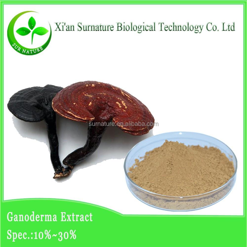 solid liquid extraction of ganoderma lucidum