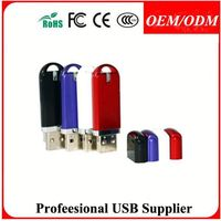 Hot,usb stick,plastic usb drive, usb flash disk,usb flash memory,mini usb,custom usb,paypal/Escrow accept