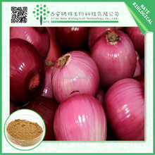 Free sample pure natural Onion Extract 10% Quercetin with high quality