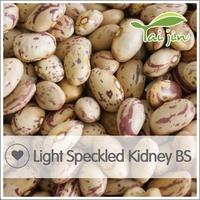 Purple Light Red Speckled Kidney Beans,Dried Borlotti Beans