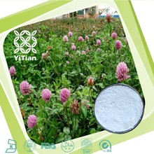 Halal Kosher Certified Natural Red Clover Extract Powder