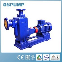 ZW electronic water pump