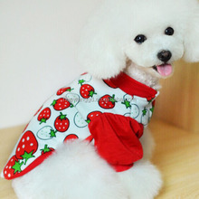 Cute dog coat with strawberry pattern printing, winter girl clothing
