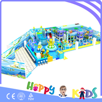 Amusement park children indoor playground/electric indoor playground equipment