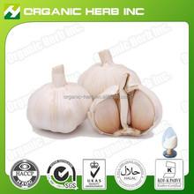 100% pure garlic extract