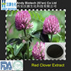 100% Good Quality Red Clover Powder Extract 8.0% Total Isoflavone