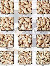 Vietnam Cashew Nuts