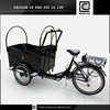 electric air cool electric passenger bike BRI-C01 family 3 wheel pedal cargo tricycle