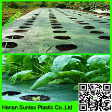 Woven&UV resistant ground cover fabric&Weed Mat UV treated