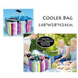 Thermostat Bag Cooler Bag