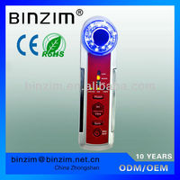 2013 new type 5-in-1 portable skin care beauty products home use supersonic vibration machine