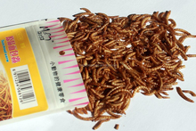 Popular natural dried beef Taste Tenebrio molitor/dried mealworm pet snack for wholesale