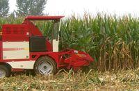 Tractor type diesel engine corn combine harvester