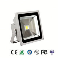 PC and aluminum outdoor 50w led flood light