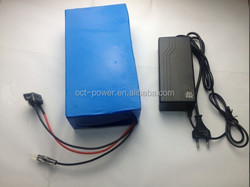 Lithium ion battery 12v li-ion battery pack with 12.6V AC charger for LED panel
