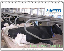 Cow Free Stalls Chinese Company