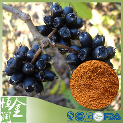Pure Natural Eleutheroside 1% Siberian Ginseng Extract