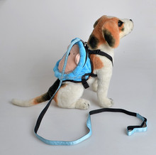 NEW Pet Dog Backpack Leads Plush Lion Sunflowers Portable Bag Dog Carriers Bags Pet Teddy Supplies