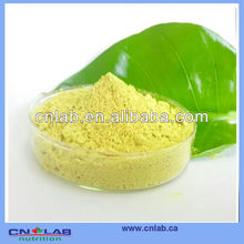 100% Natural, Manufacturer Direct Supply 95% High Quality Quercetin Quercetin Extract