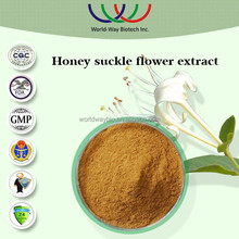 NATURAL free sample supply honeysuckle extract,5% chlorogenic honeysuckle flower extract flos lonicerae