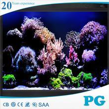 Pg moderno pictures de tanques de peixes