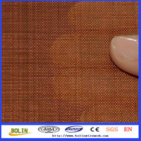 Cheap Copper Wire Mesh/Metal Screens for radiator