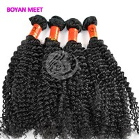 Wholesale Price Virgin Kinky Curly Bresilienne Hair Extension In Guangzhou