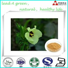 Hot Sale GMP Certificate 100% Pure Natural green ginsen Okra extract
