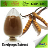 GMP ISO Natural High Quality Cordyceps Sinensis Extract Powder 20%-50% Polysaccharide