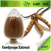 GMP Natural High Quality Cordyceps Sinensis Extract Powder 20%-50% Polysaccharide