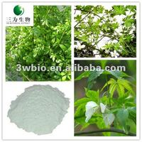 Hot Leading Plant Extract Natural Sweetener Sweet tea Leaf Extract