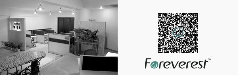 Polyvinyl Acetate PVAc {cas 9003-20-7} - Foreverest