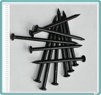 Black concrete nail / black color steel nails