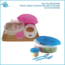 BPA-free Clear Plastic Fruit Salad Container With Cool Pack and Fork