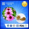 HOT sell Echinacea purpurea extract,made in China cichoric acid & polyphenol