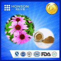 HOT sell Echinacea purpurea extract,made in China cichoric acid & polyphenol