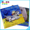 Rich experienced China printer A4 size paper overseas custom hardcover book printing