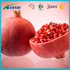 Cosmetology top quality plant extract 40% 50% Polypheol Pomegranate extract