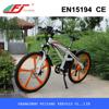 FUJIANG electric bike, green power electric bike, electric bike cover with EN15194