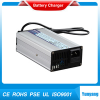 Smart 12V 10A li-ion/LiFePo4 battery charger for 100ah battery