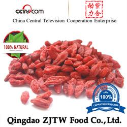 Factory Supply Fruit of Barbary Wolfberry Powder/Goji Wolfberry