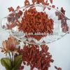 new crop dried Goji berry for sale