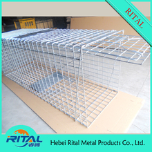 Cage Trap for raccoon/mouse/squirrel/fox/rat/animal/rabbit/dog/cat